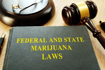 Cannabis-Home-Cultivation-State-Law