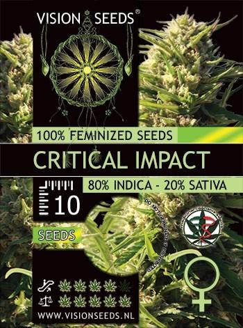 Critical Impact fem