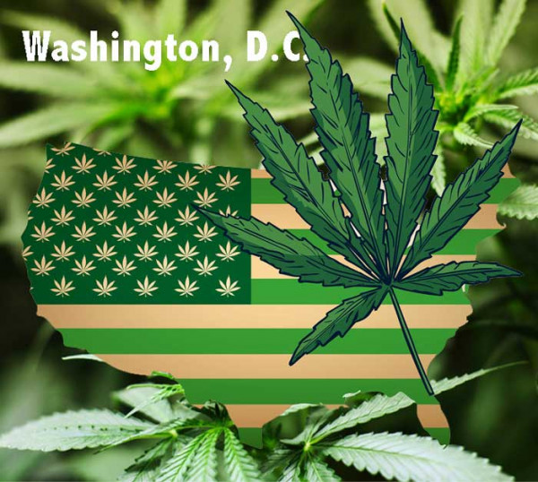 Green-US-flag-marijuana-Washington-DC