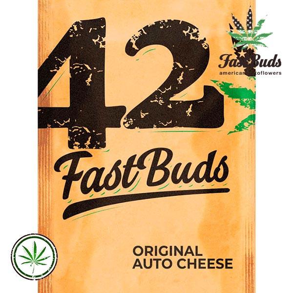 Original Auto Cheese