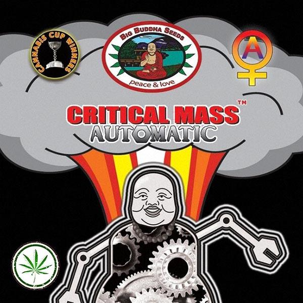 Critical Mass Automatic